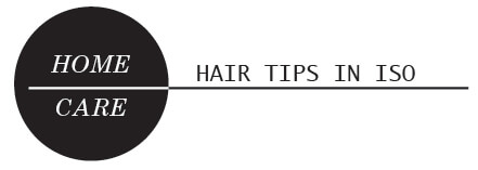 Hair Tips in Isolation Heading